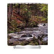 Glimpses Of Spring  Shower Curtain