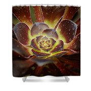 Glistening Glowing Garden Jewel Shower Curtain