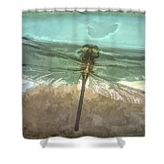 Glistening In Nature Shower Curtain