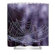 Glistening Web Shower Curtain