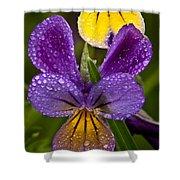 Glittered Wild Pansies Shower Curtain