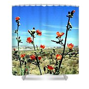 Globe Mallows Shower Curtain
