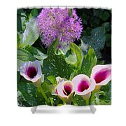 Globe Thistle And Calla Lilies Shower Curtain by Corey Ford