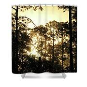 Glorious Dawn Shower Curtain