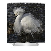 Glorious Egret Shower Curtain