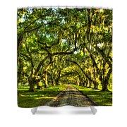 Glorious Entrance Tomotley Plantation South Carolina  Shower Curtain