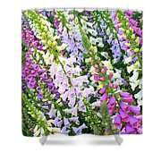 Glorious Foxgloves Shower Curtain