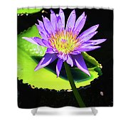 Glorious Lily Shower Curtain