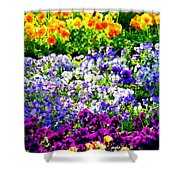 Glorious Pansies Shower Curtain