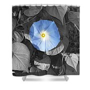 Glory Blue Shower Curtain