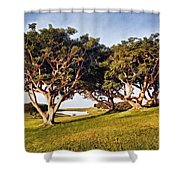 Glory In The Morning Pntb Shower Curtain