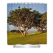Glory In The Morning Txb Shower Curtain