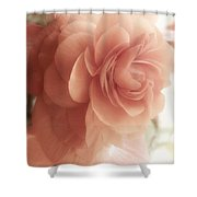 Glow Shabby Cottage Flower Sunlit Shower Curtain