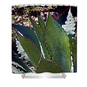 Glowing Agave Shower Curtain