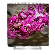 Glowing Blossoms  Shower Curtain