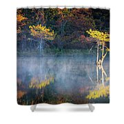 Glowing Cypresses Shower Curtain