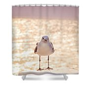 Glowing Day Shower Curtain