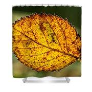 Glowing Fall Leaf Shower Curtain