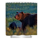Glowing Grizzly Bear Shower Curtain