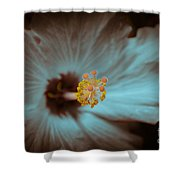 Glowing Hibiscus Shower Curtain