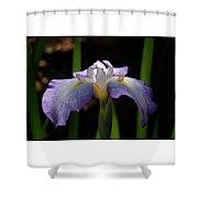 Glowing Iris Shower Curtain