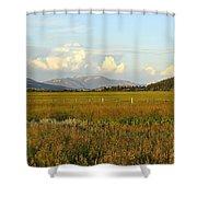 Glowing Meadow Shower Curtain
