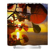 Glowing Red II Shower Curtain
