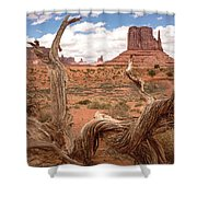 Gnarled Tree At Monument Valley  Shower Curtain