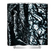 Gnarled Vines Surround A Tree Shower Curtain