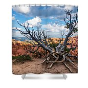 Gnarly - Bryce Canyon Shower Curtain