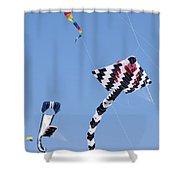 Go Fly A Kite Shower Curtain