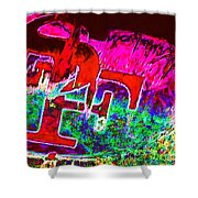Go Niners 20130115 Shower Curtain