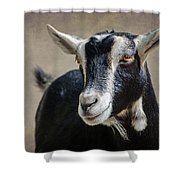 Goat 2 Shower Curtain
