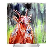 Goat From The Mountain Shower Curtain
