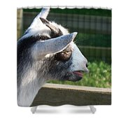 Goat Minature Shower Curtain