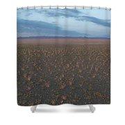 Gobi Desert Shower Curtain