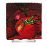 God's Kitchen Series No 3 Tomato Shower Curtain