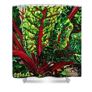 God's Kitchen Series No 7 Swiss Chard Shower Curtain