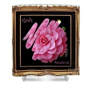 God's Paintbrush With Gold Frame Shower Curtain