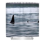 Godzilla Is Coming In Widescape Shower Curtain