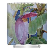 Going Bananas Shower Curtain