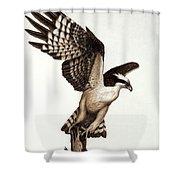 Going Fishin' Osprey Shower Curtain