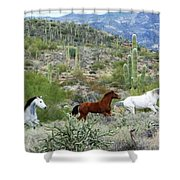 Going For A Run Shower Curtain