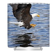 Going For The Kill Shower Curtain
