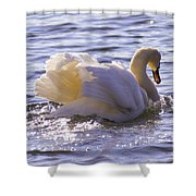 Going Gracefully Shower Curtain