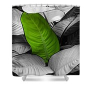 Going Green - Dreamy Shower Curtain