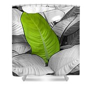 Going Green Lighter Shower Curtain