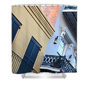 Gold And Gray In New Orleans Shower Curtain