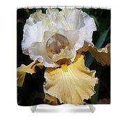Gold And White Iris Shower Curtain