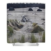 Gold Beach Oregon Beach Grass 18 Shower Curtain